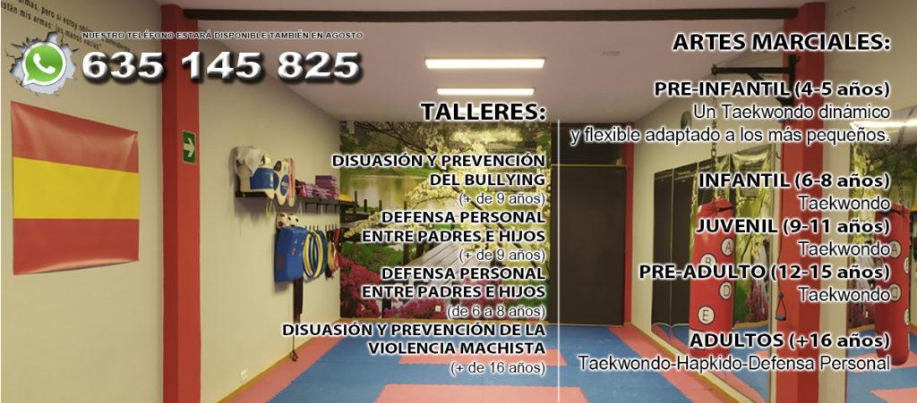 TAEKWONDO Y HAPKIDO CLASES PRESENCIALES Y ONLINE